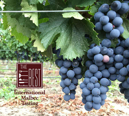 The Fifty Best Malbec Tasting 2017