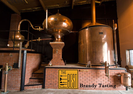 The Fifty Best Brandy Tasting