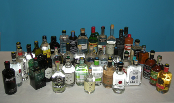 The Fifty Best Gin Tasting