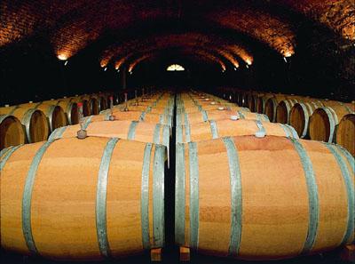 Friuli wine barriques