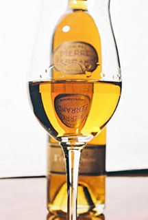 Cognac in glass